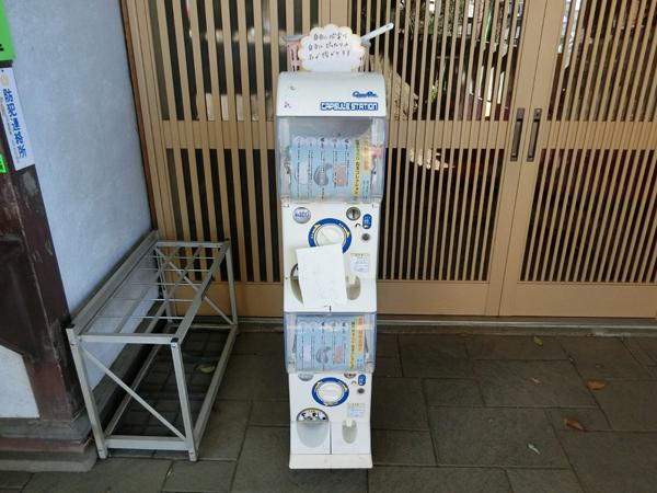 北澤八幡神社のガチャ
