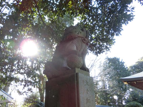 喜多見氷川神社の左の狛犬