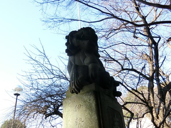 喜多見氷川神社の右の狛犬