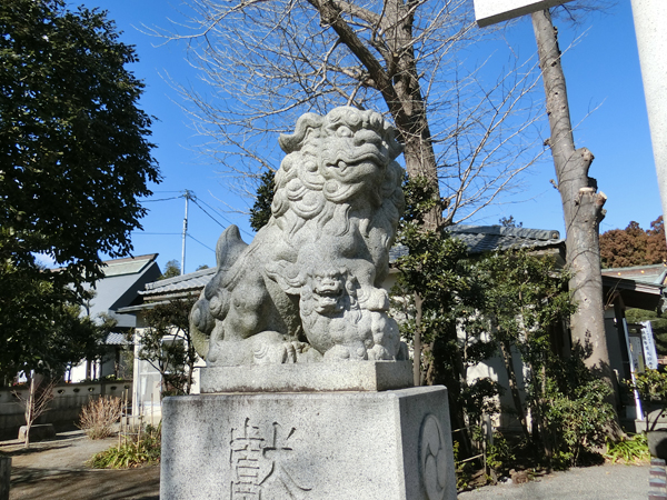 阿豆佐味天神社の左の狛犬