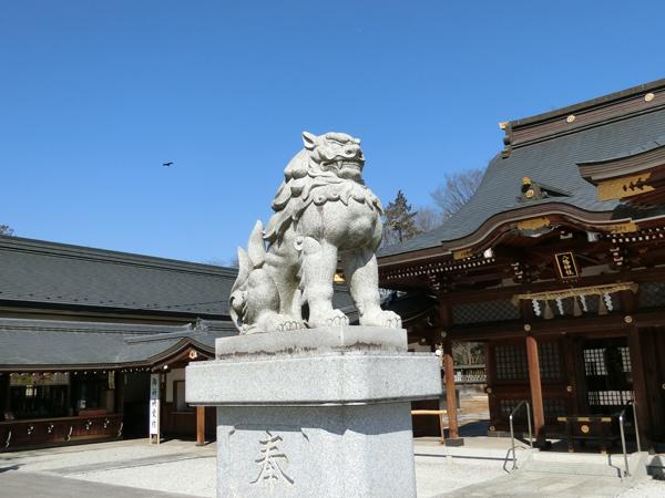 立川諏訪神社の左の狛犬