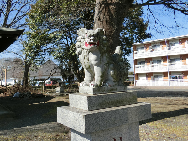 八幡大神社の右の狛犬