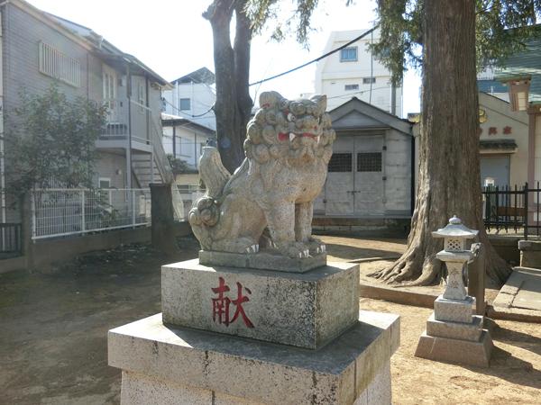 新中野天祖神社の左の狛犬
