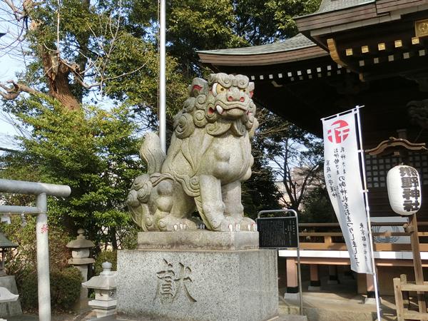 恋ヶ窪熊野神社の左の狛犬