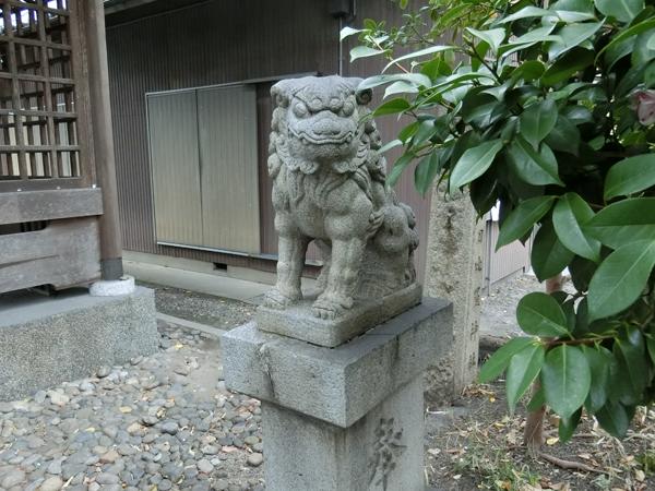 金刀比羅神社の右の狛犬