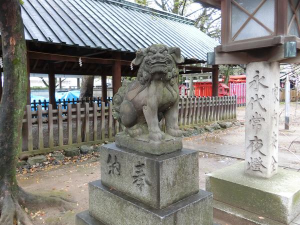 那古野神社の左の狛犬