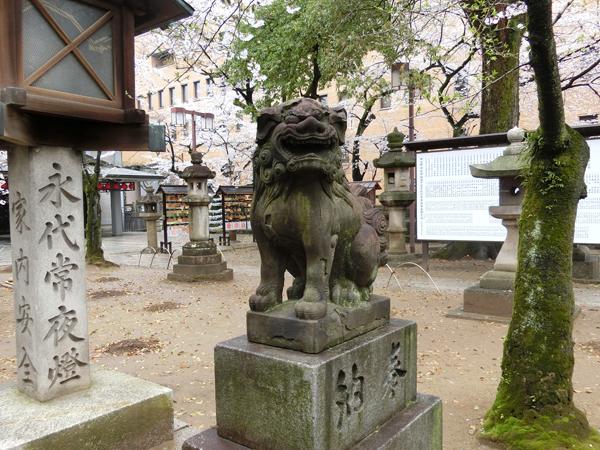 那古野神社の右の狛犬