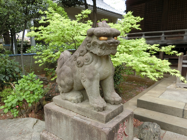 白山神社の左の狛犬