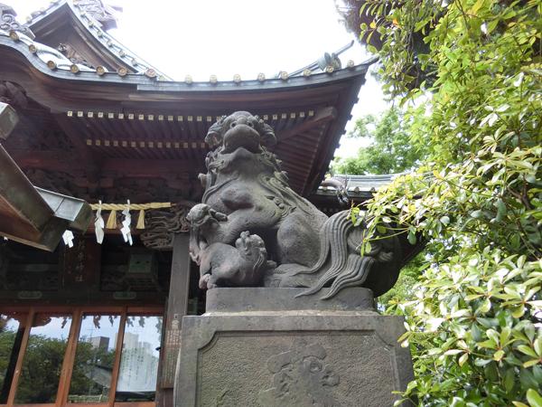 荏原神社の右の狛犬
