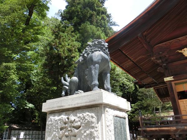 諏訪大社秋宮の左の狛犬