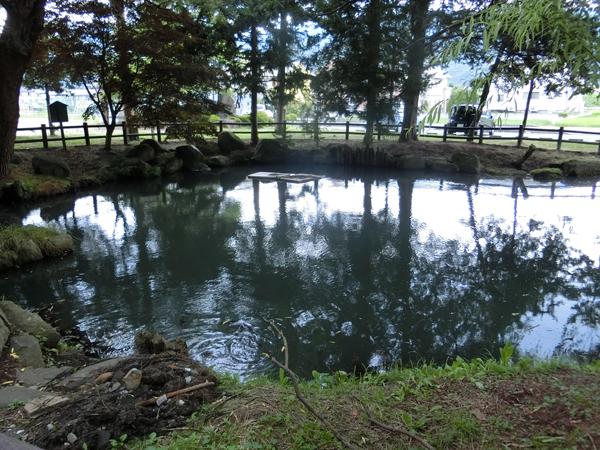 葛井の清池