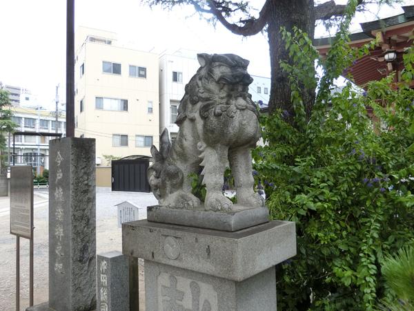 今戸神社の左の狛犬