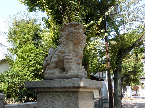 亀戸香取神社の左の狛犬
