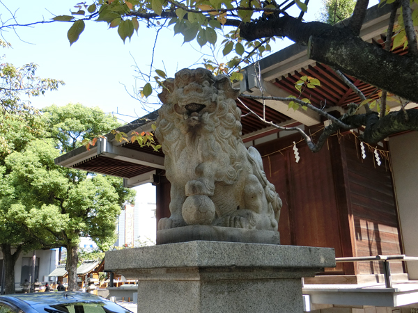 亀戸香取神社の右の狛犬