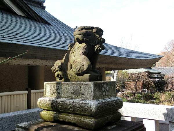 五條天神社の左の狛犬
