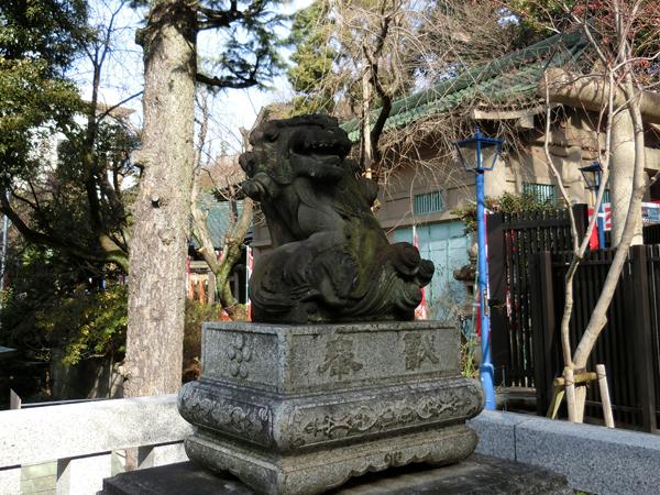 五條天神社の右の狛犬