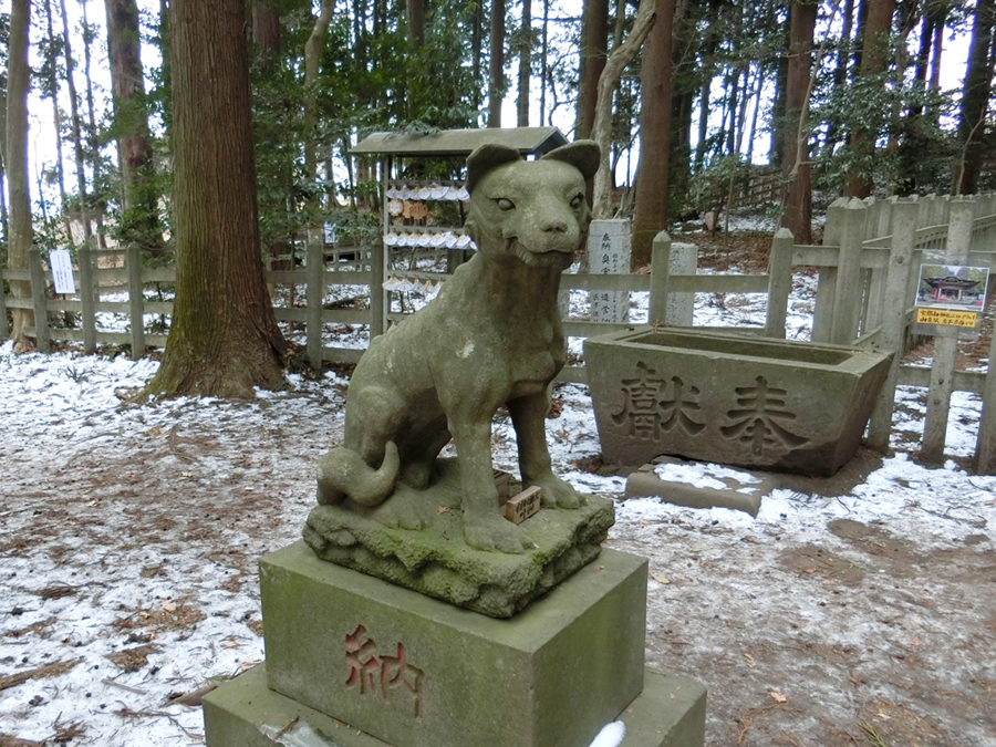 宝登山神社奥宮の左の狼