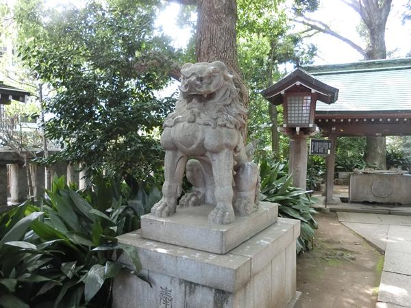 奥澤神社の左の狛犬
