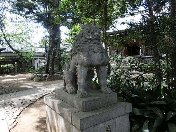 奥澤神社の右の狛犬