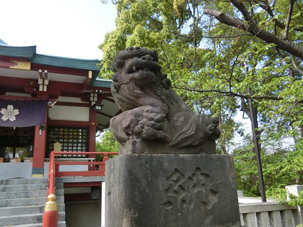多摩川浅間神社の右の狛犬