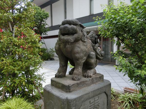 成子天神社の右の狛犬