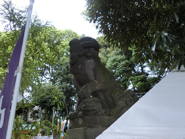 太子堂八幡神社の右の狛犬