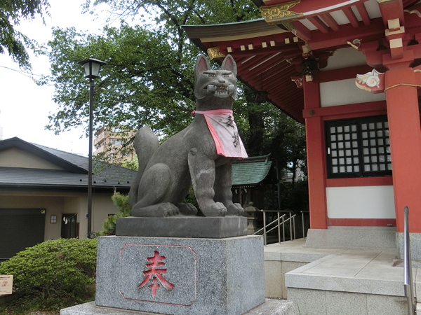 若林稲荷神社の左の狐