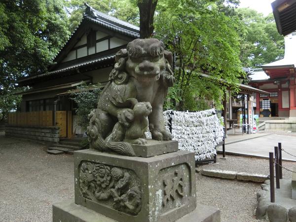 世田谷八幡宮の左の狛犬