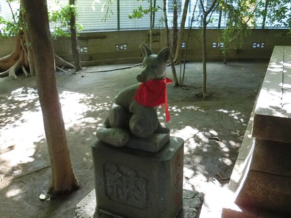 若松稲荷神社の左の狐