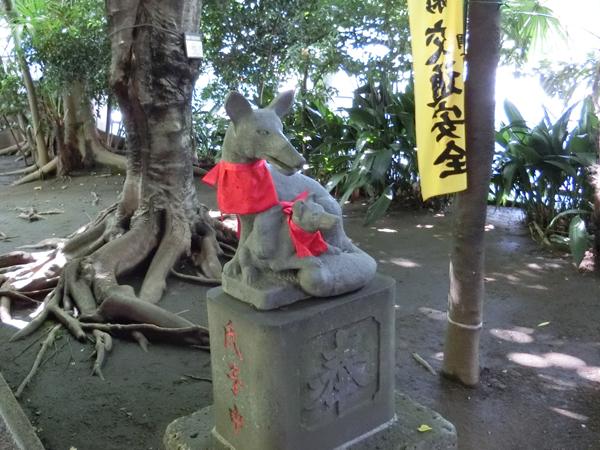 若松稲荷神社の右の狐