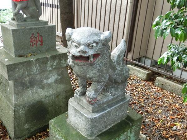 さくら稲荷神社の右の狛犬