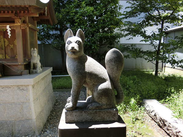 羽衣町厳島神社内の豊受稲荷神社にいる右の狐