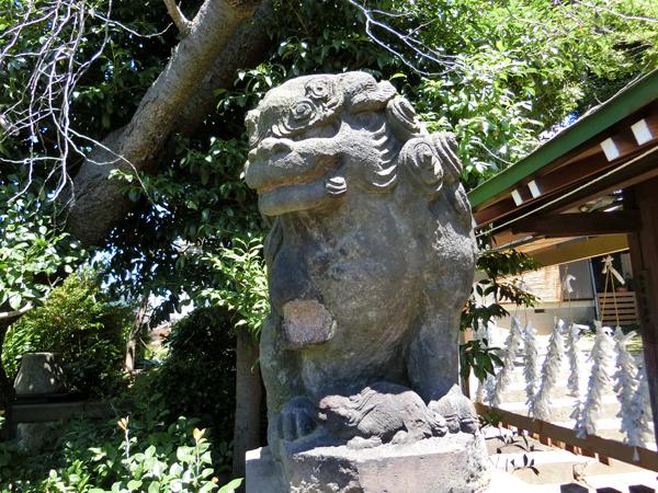 石川町諏訪神社の左の狛犬