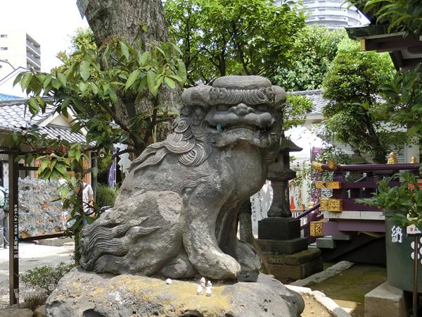 高木神社の左の狛犬