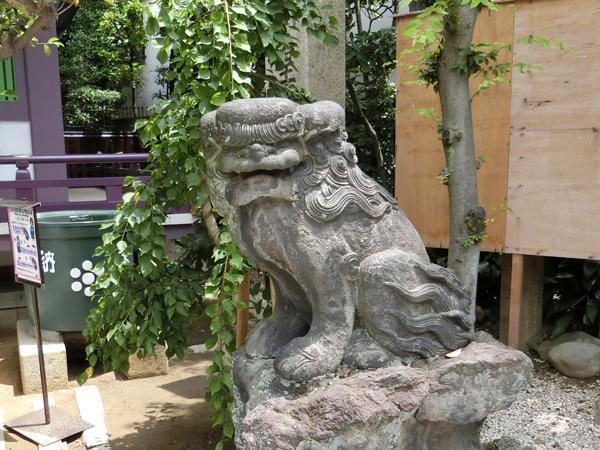高木神社の右の狛犬