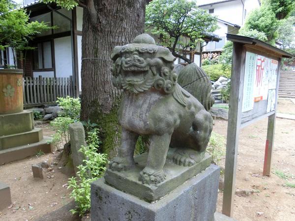 西向天神社の右の狛犬
