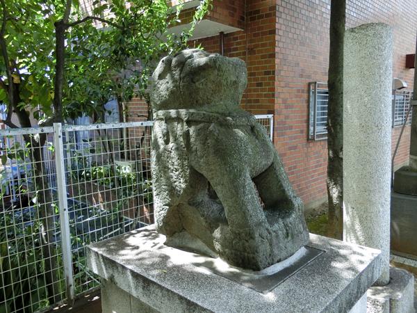 穏田神社の左の狛犬