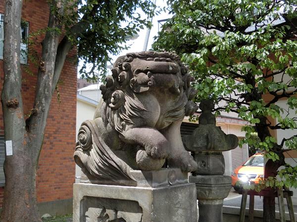穏田神社拝殿前の左の狛犬