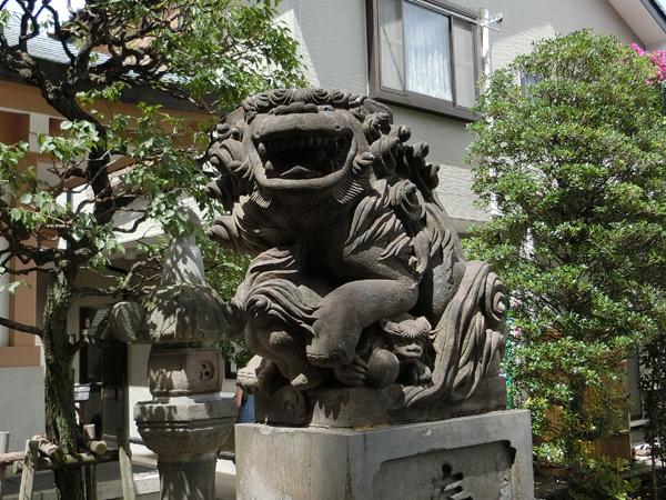 穏田神社拝殿前の右の狛犬