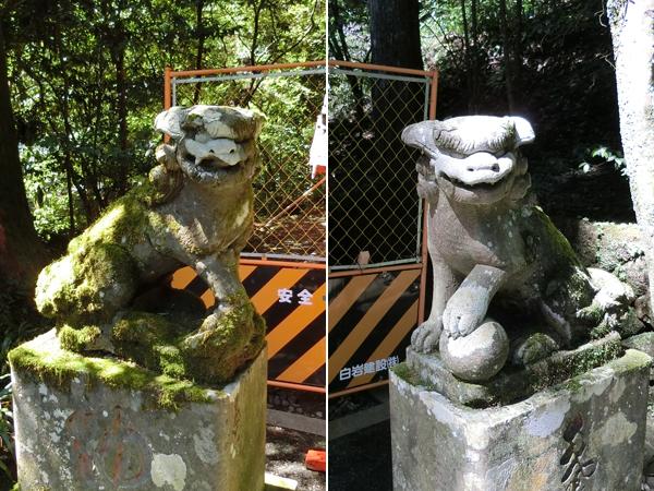 曽我神社の狛犬