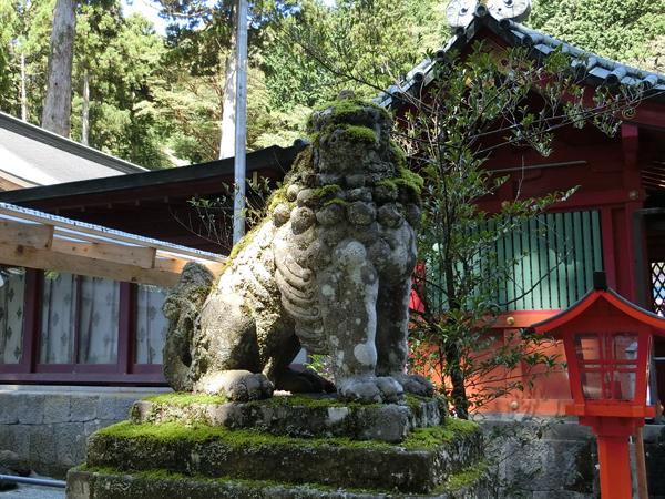 箱根神社の左の狛犬