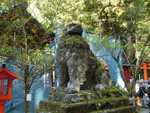 箱根神社の右の狛犬
