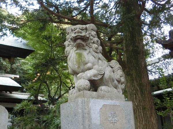用賀神社の右の狛犬