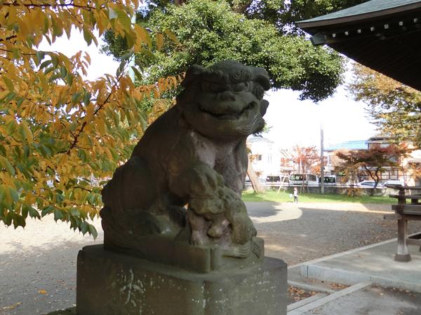下石原八幡神社の左の狛犬