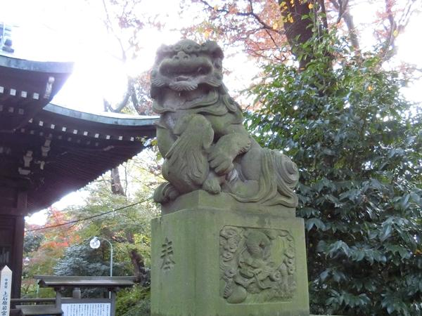 上石原若宮八幡神社の右の狛犬