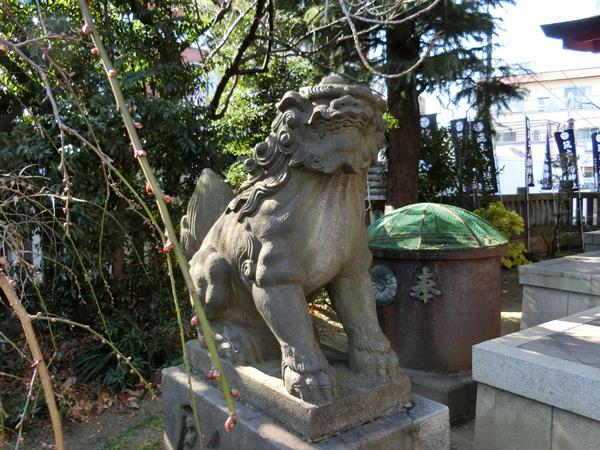 筑土八幡神社の左の狛犬