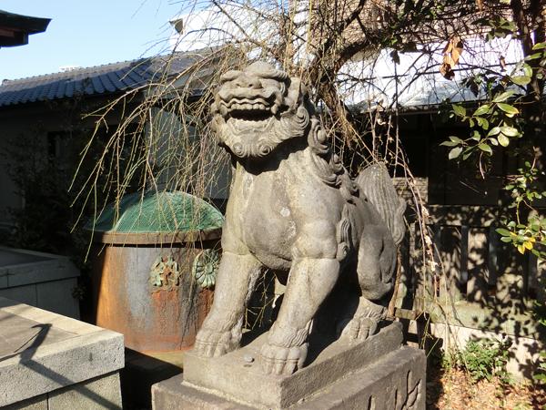 筑土八幡神社の右の狛犬