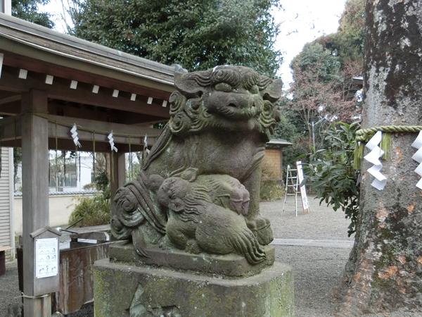 青渭神社の左の狛犬