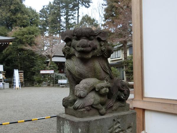 青渭神社の右の狛犬