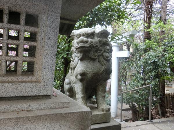 子安稲荷神の左の狛犬